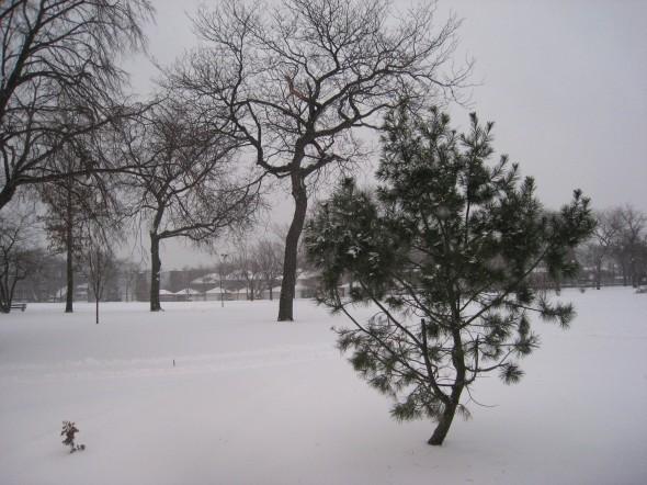 winter-2008-050