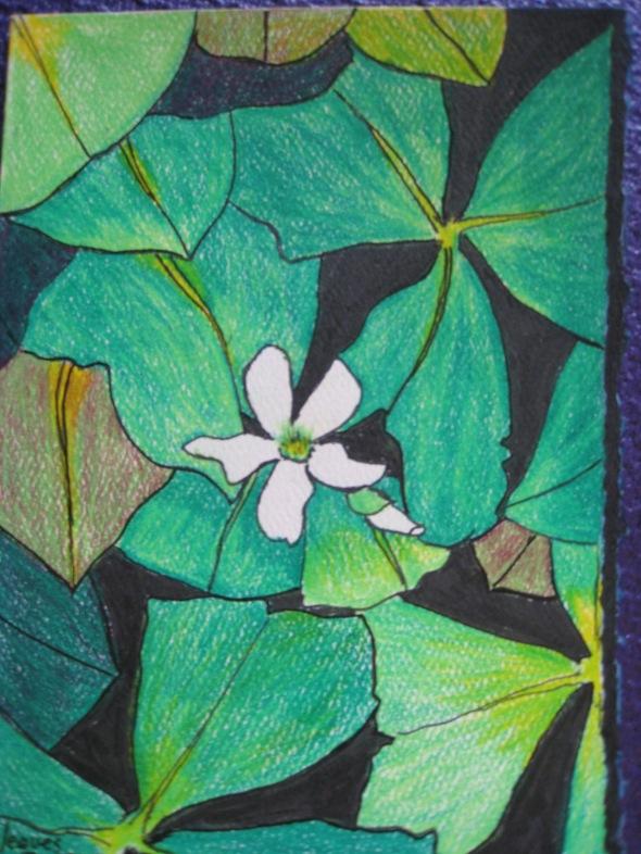 flowers #1 -0182